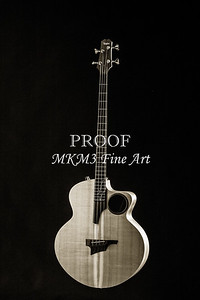 108.1835 Taylor AB1 Acoustic Electric Bass BW