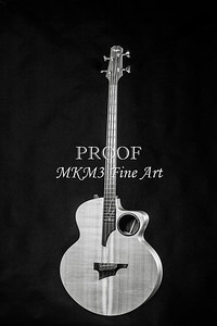 101.1835 Taylor AB1 Acoustic Electric Bass BW