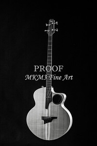 109.1835 Taylor AB1 Acoustic Electric Bass BW