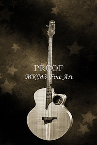 102.1835 Taylor AB1 Acoustic Electric Bass BW