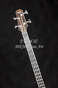 410.1835 Taylor AB1 Acoustic Electric Bass Lines