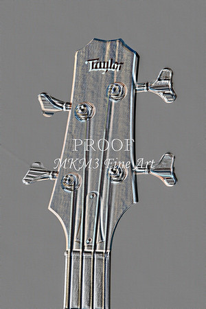 511.1835 Taylor AB1 Acoustic Electric Bass Embossed