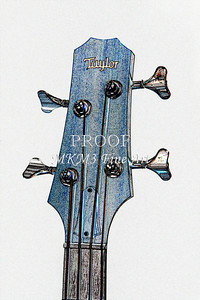 303.1835 Taylor AB1 Acoustic Electric Bass Watercolor