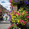 City of Flowers