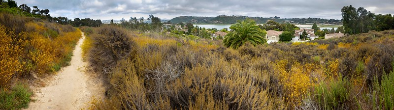 Batiquitos Lagoon, Carlsbad, California