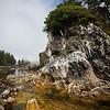 West Coast scenery on Benson Island.  Broken Island Group, Barkley Sound, Vancouver Island, British Columbia, Canada