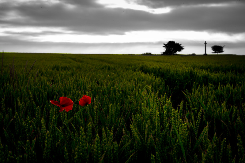 Somme Dawn 100 years on