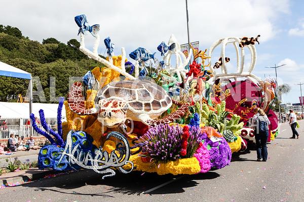 Day Parade 2017