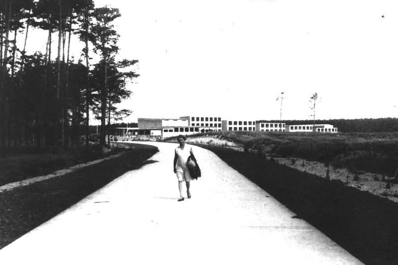 Gunta Stölzl - Summer 1929