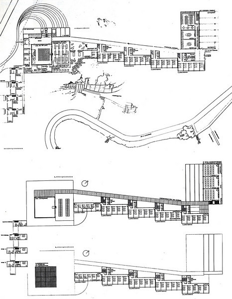 Floor Plans and Section