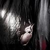 IMG_6812 December 23, 2012 Sesion de Embarazada de Yemnisse