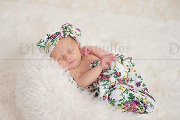 Baxter Newborn