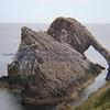 bow fiddle rock ( Cliff walkway 10NE) - 1