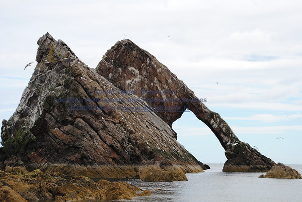 bow fiddle rock - 20