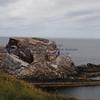 bow fiddle rock ( Cliff walk 10N) - 3