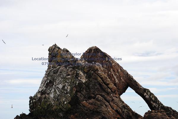 bow fiddle rock ( Beach10E)