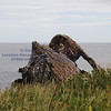 bow fiddle rock ( path 10NE) - 3
