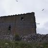 Dunnottar Castle - 006