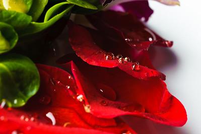 5672-d3_Fahrenheit_Restaurant_San_Jose_Food_Photography