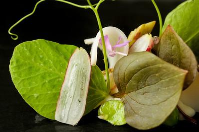 0223-d3_Le_Papillon_Restaurant_Interior_Photography