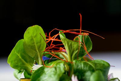7410_d800b_Le_Papillon_San_Jose_Food_Photography