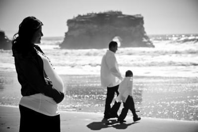 0785-d3_Lupe_Natural_Bridges_Santa_Cruz_Maternity_Family_Photography