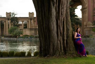 9939_d810a_Nicky_Palace_of_Fine_Arts_San_Francisco_Maternity_Photography