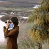 Birdwatching near Dumbarton Bridge