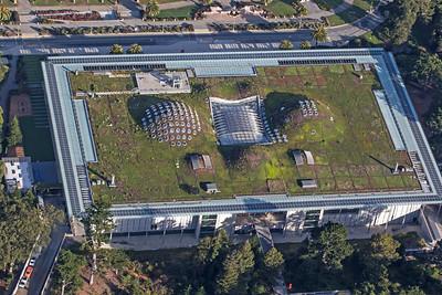 Roof Garden @ California Academy of Sciences
