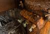 Rust Never Sleeps<br /> <br /> Mess Hall, Fort McDowell