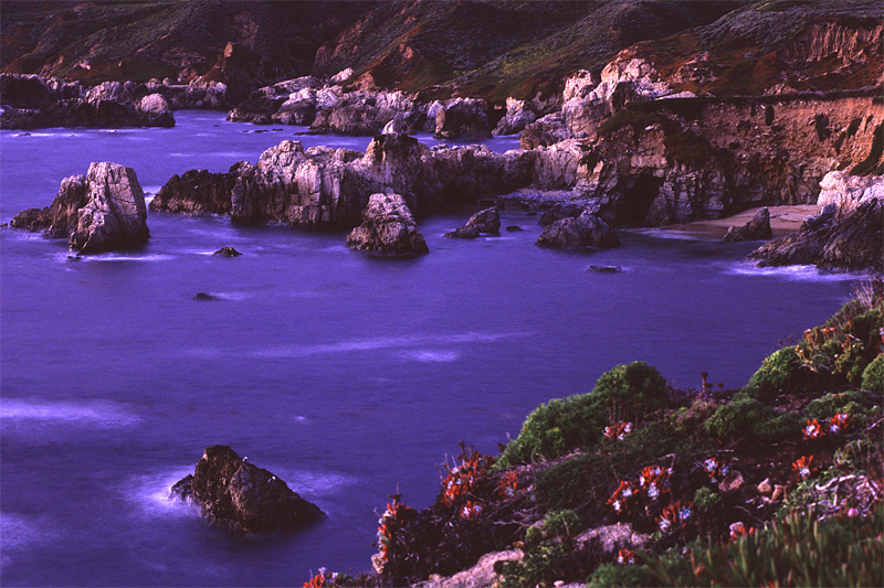 Garrapata State Beach, California