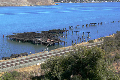 Remnants of the old wharves from the days when Crockett and Port Costa were bustling shipping towns.   The demise of the wharves were blamed on the teredo, a wood boring worm that destroyed piers and wharves in the Carquinez Straits.