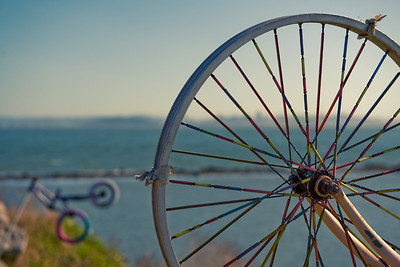 Bicycle Wheel  Albany Bulb, Eastshore State Park, Albany, CA