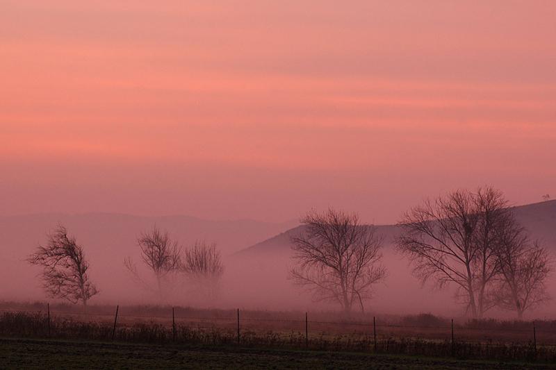 Foggy Sunrise, Coyote Hills, Fremont, CA