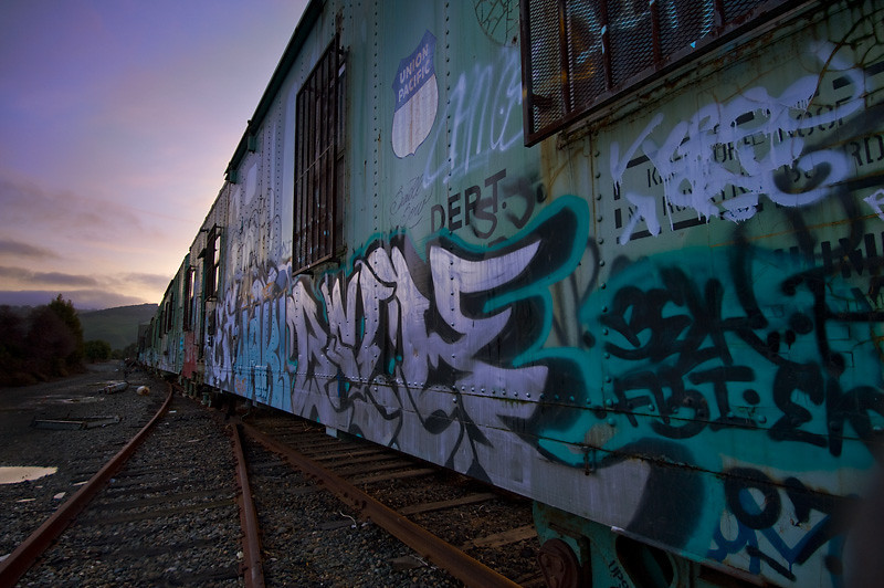 Idle Tracks<br /> <br /> Abandoned rail cars.<br /> Fremont, CA