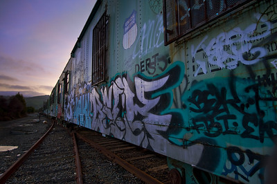 Idle Tracks  Abandoned rail cars. Fremont, CA