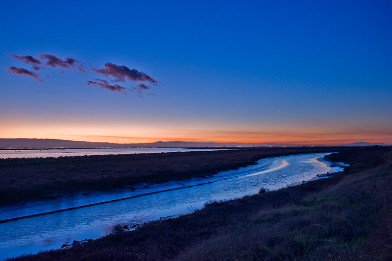Newark Slough, San Francisco Bay National Wildlife Refuge, Fremont, CA