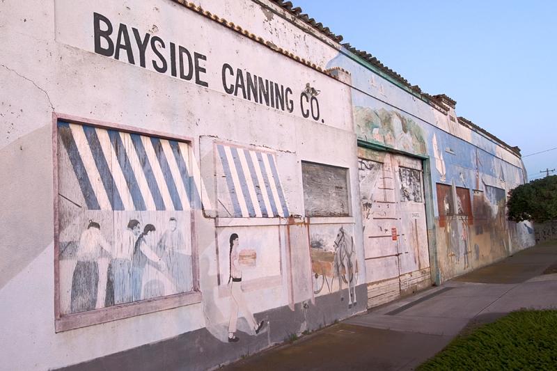 Bayside Cannery, Alviso, CA