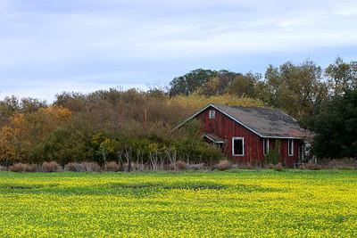 Fremont Farmhouse