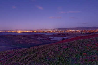 Coyote Hills.  Lights from Fremont, Union City and Hayward off in  the distance.  The evening looked promising, so I loaded my mountain bike into my truck  along with my camera gear and drove to Coyote Hills.   It's a couple of miles of riding to get to this location, mostly on paved  paths or roads.  By the time I got to my location, it was fairly dark, windy and cold.  The wind was such that I needed to use my camera pack, hanging off the center  column of my tripod to stablize it.  I needed to increase the exposure plus use fill lighting in Adobe Camera Raw  processor to open up the shadows.