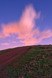 Looking up towards one of the peaks along the ridge of Coyote Hills.  Interesting cloud formation.