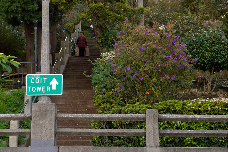 Filbert Steps, Telegraph Hill, San Francisco, CA