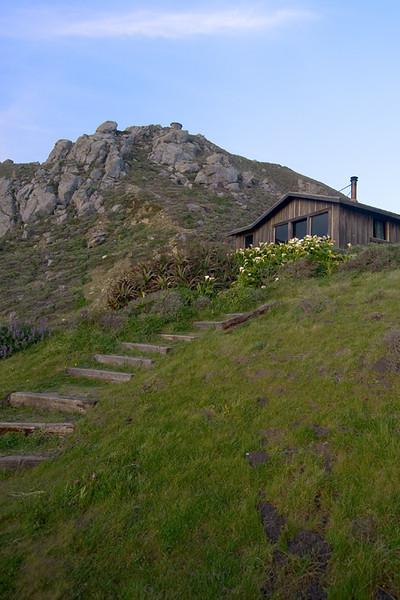 Steep Ravine Cabin and Cala Lillies, California