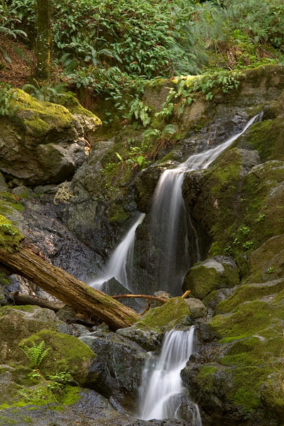 Cataract Creek, Marin County, California