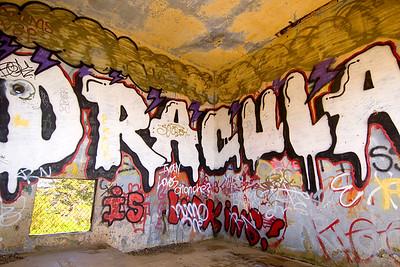 Dracula Graffiti, Marin Headlands, Califormia