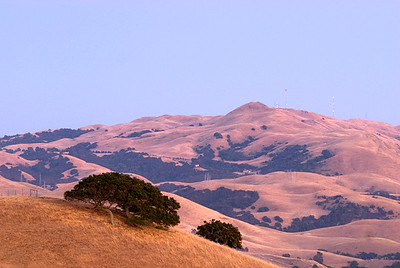 Mission Peak, Fremont, CA