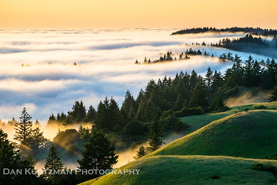 Springtime on Mt. Tam