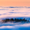 Floating in Fog, Mt. Tamalpais
