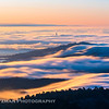 Sea of Fog from Atop Mt. Tam