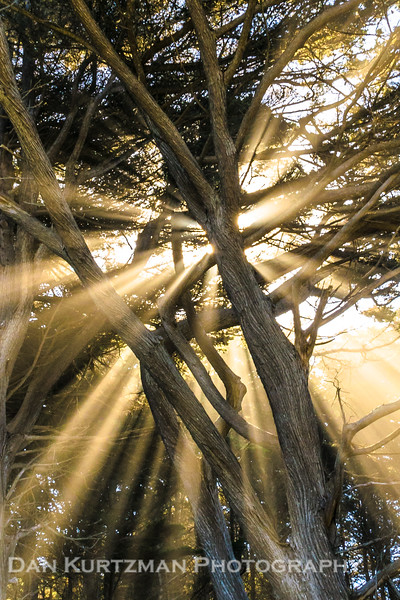 Heavenly Rays on the California Coast